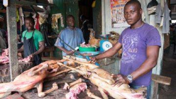 ghana-meat-process