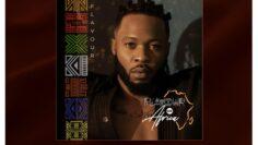 Flavour Of Africa Album cover